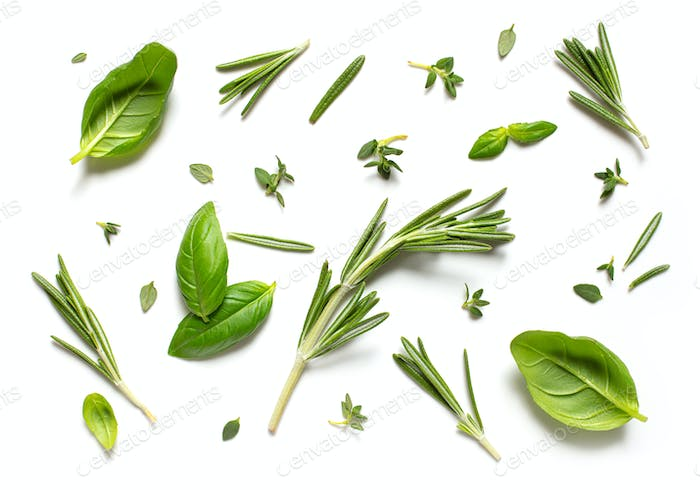 various herbs on white background, top view