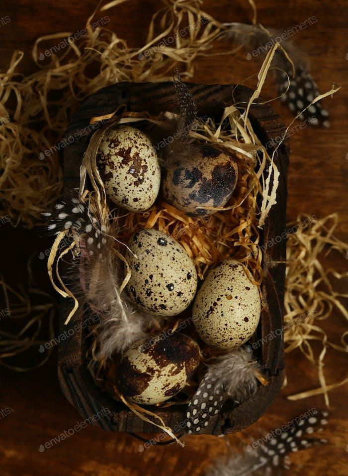 Ostern mit Wachteleier
