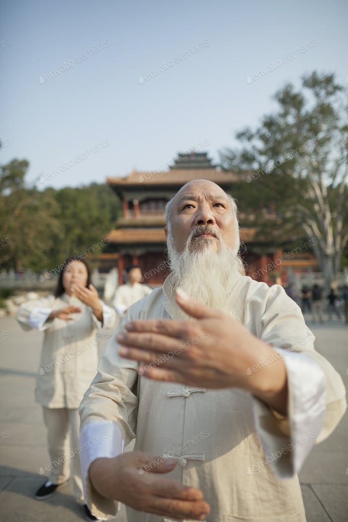 Chinese Practicing Tai Ji