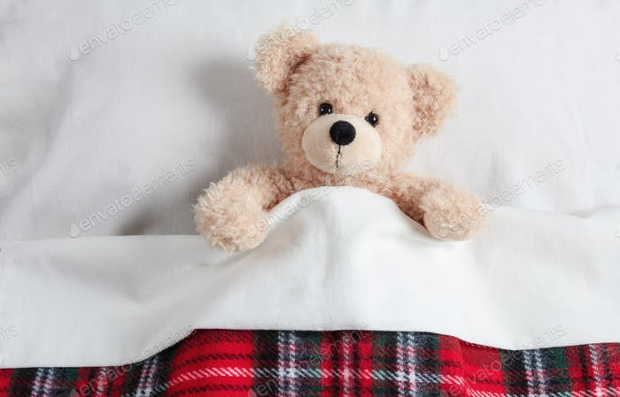 Cute teddy covered with a warm blanket, laying in bed
