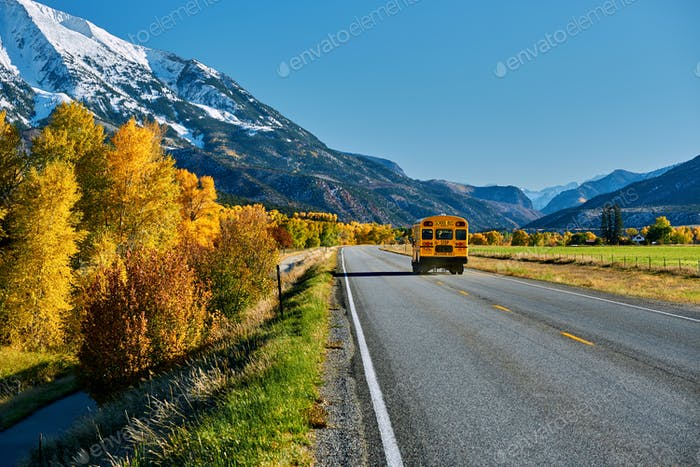 School bus on highway in Colorado at autumn