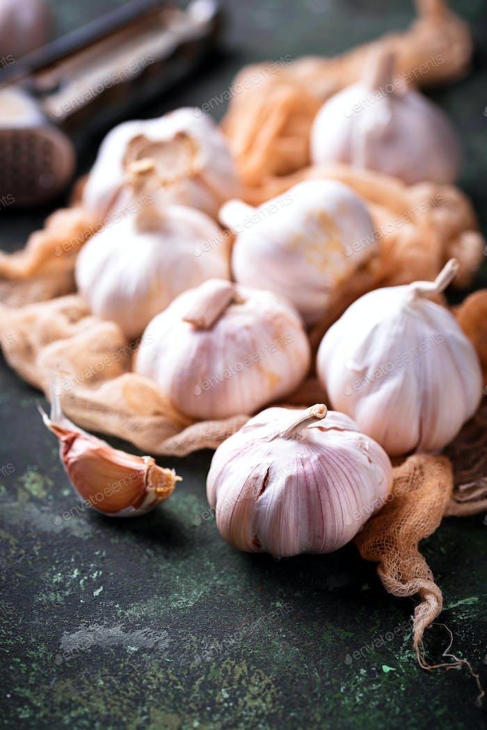 Fresh garlic on green background
