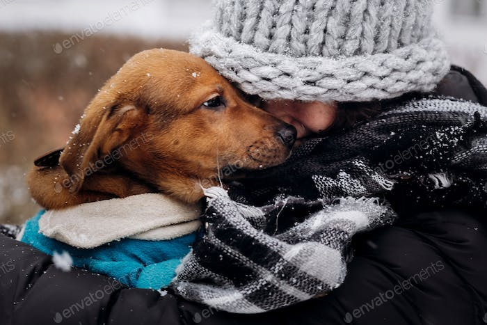 moments of true happiness. adoption concept. save animals