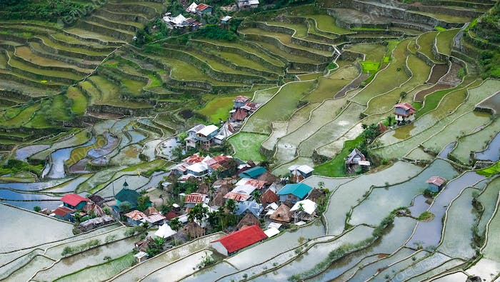Village houses near rice terraces fields