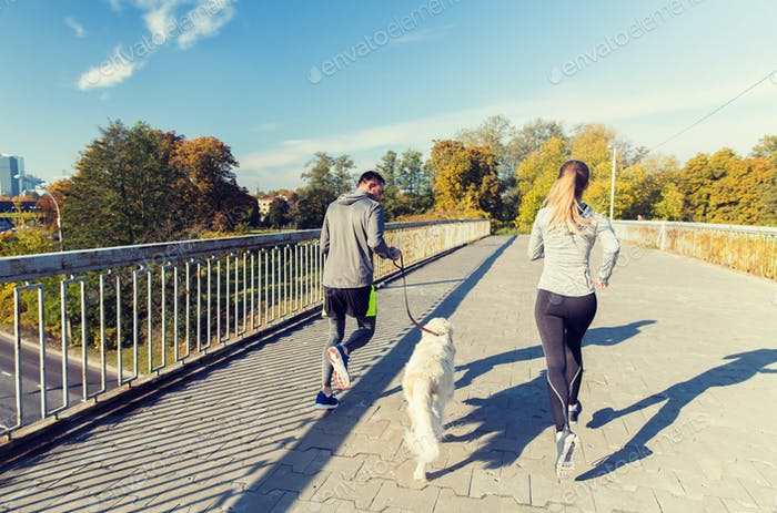 Nahaufnahme der paar mit Hund laufen im freien