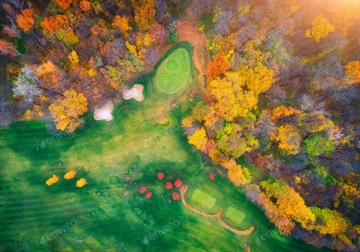 Aerial view of amazing autumn park in europe in the evening