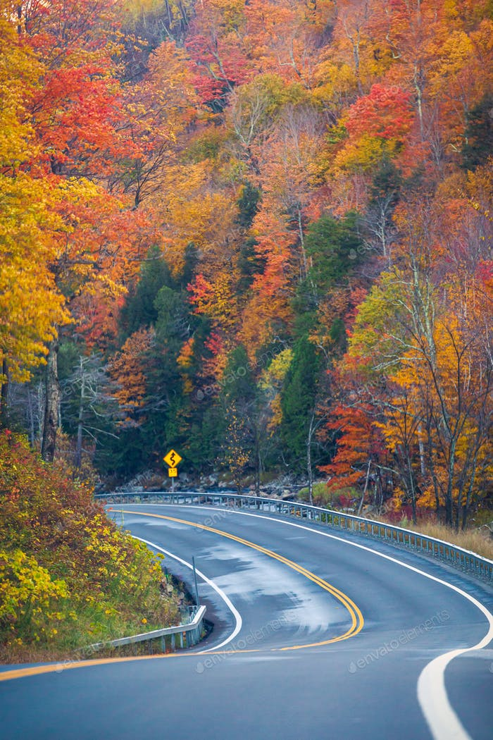 Winding Road Through Autumn Trees with Fall Colors in New England