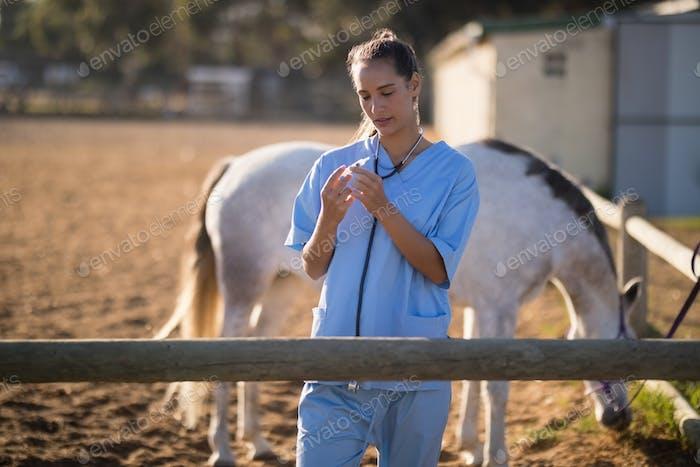 Tierarzt Untersuchung Spritze in Scheune