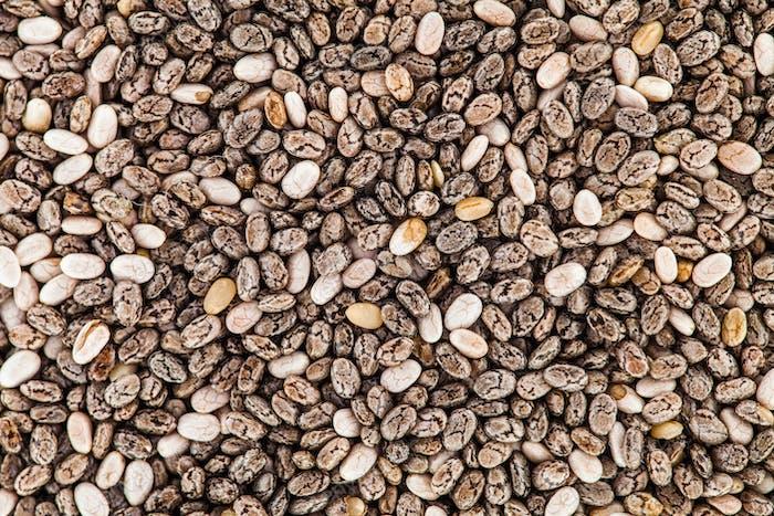 Extreme Closeup Texture of Chia Seeds - Studio Shot
