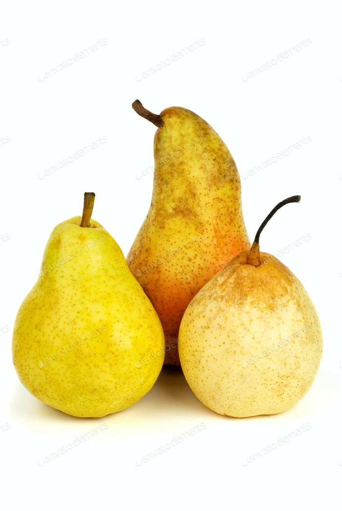 Three pears of different breads