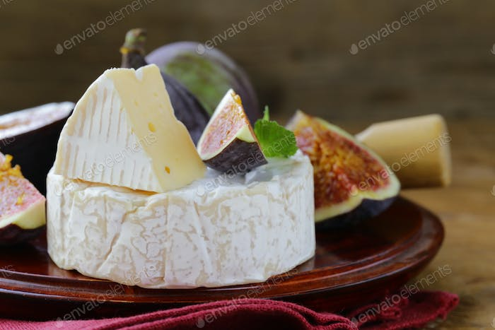 Cheese With White Mold