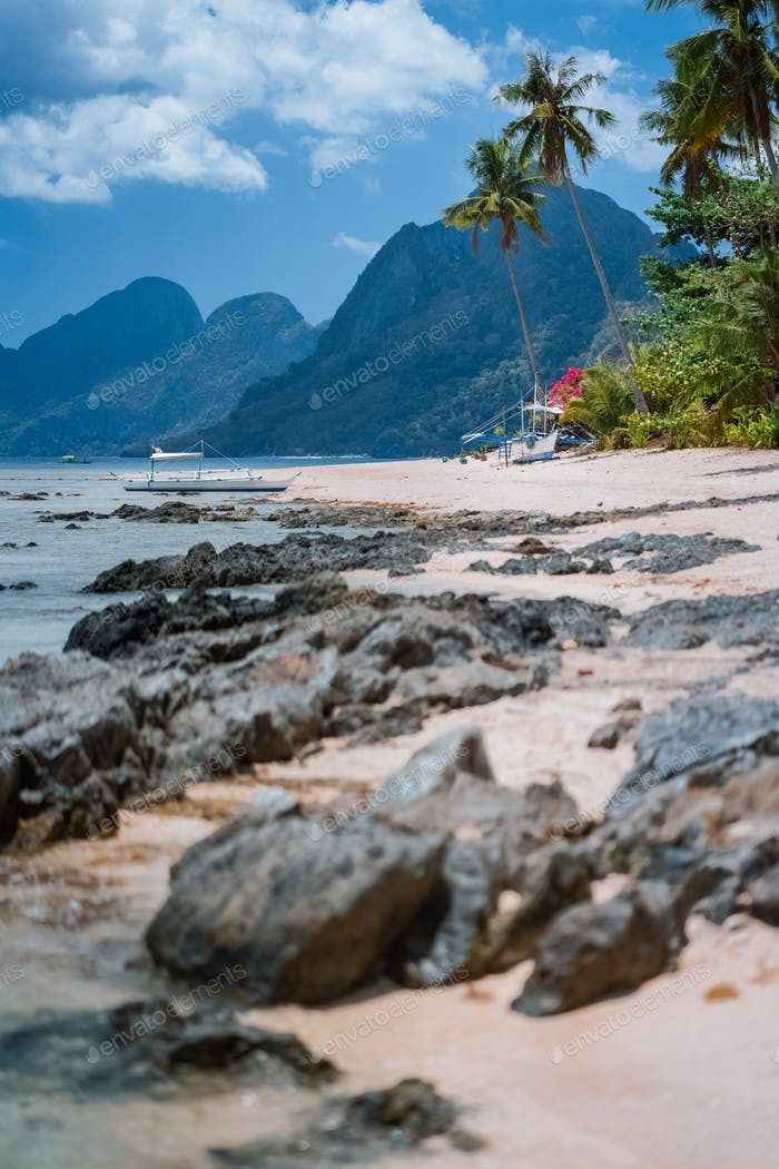 Boats in low tide under palm trees with amazing nature scenery rocky defocused foreground. Tropical