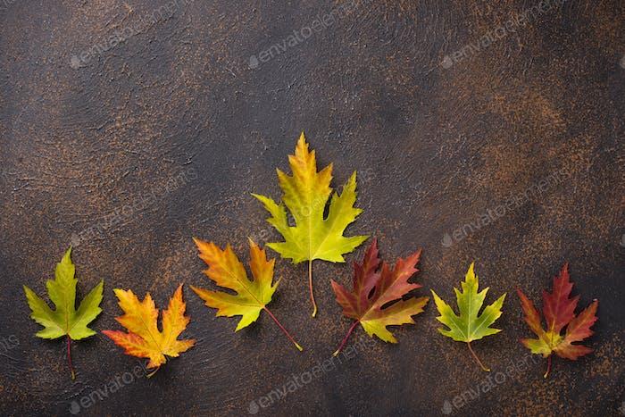 Herbsthintergrund mit Ahornblättern