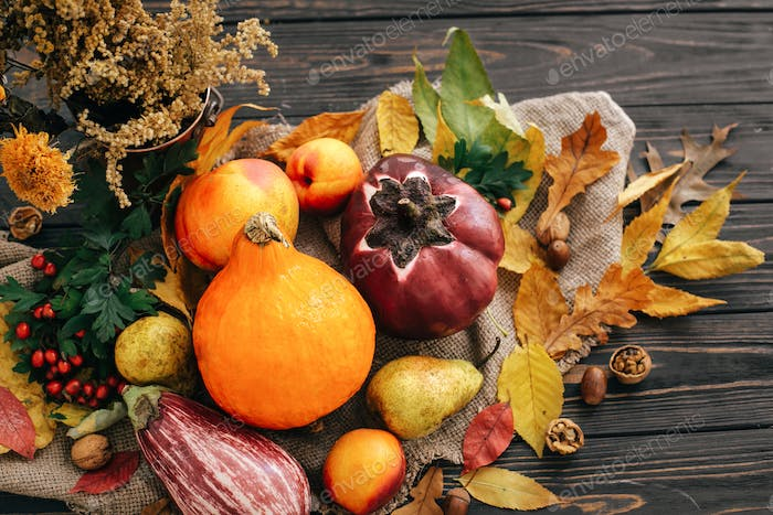 Beautiful composition of pumpkin, autumn vegetables with colorful leaves