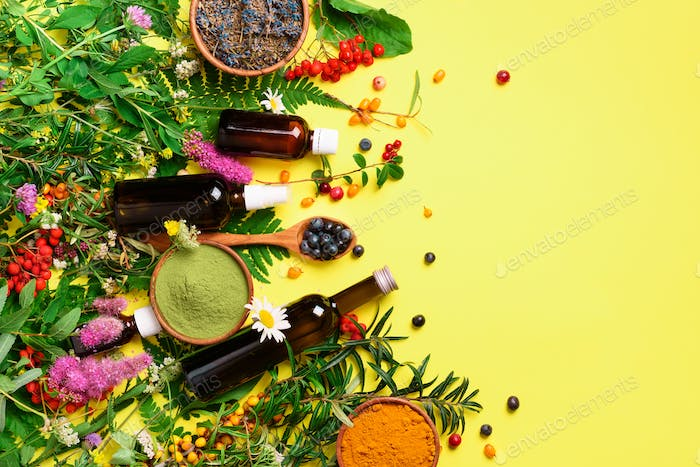 Natural herbal ingredients for alternative medicine on yellow background. Natural skin care beauty