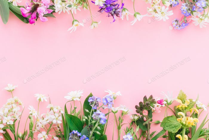 Wildflowers colorful frame on pink paper background