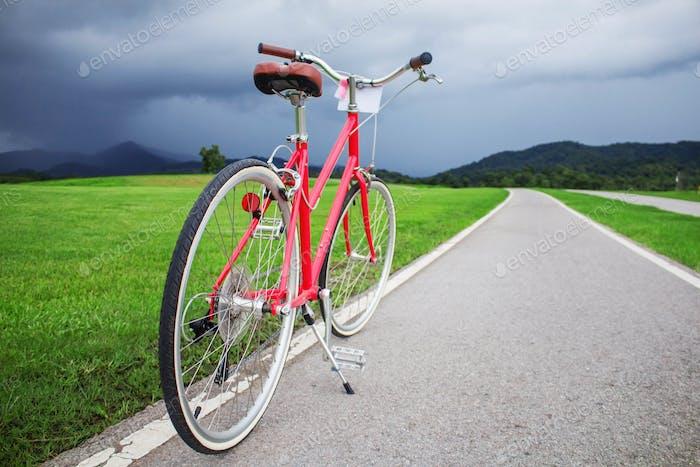 bike on road in park