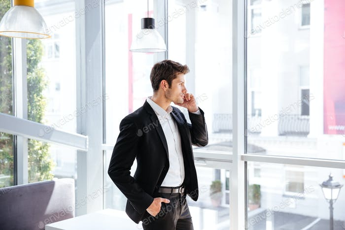 Businessman standing near the window and talking on cell phone