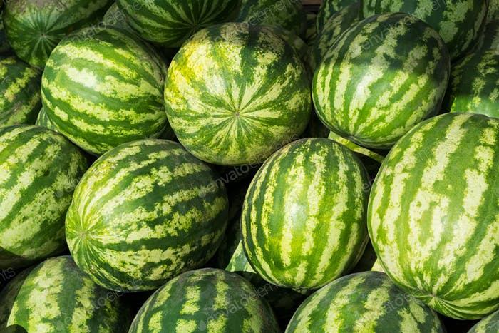 Watermelon as abundance harvest symbol