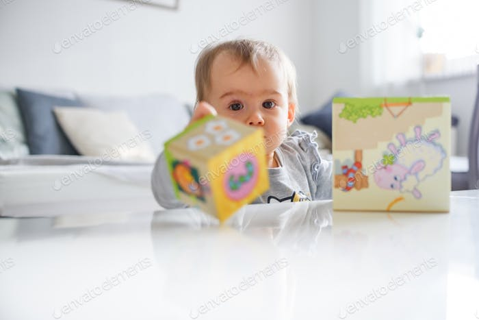 Sweet baby playing with educational toys. Baby development