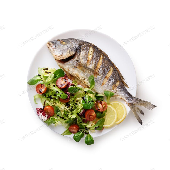 Grilled dorada fish on white plate