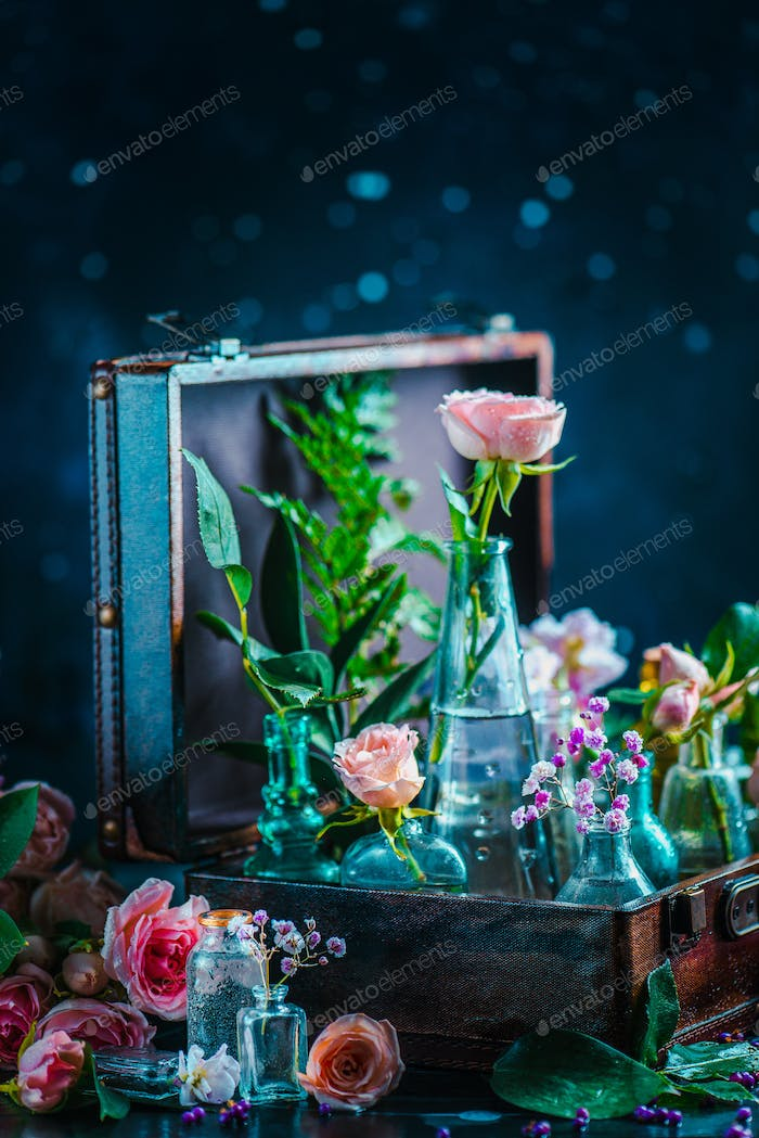 Flower collection in vintage glass jars, vases, and vials in a suitcase. Botany and perfume concept