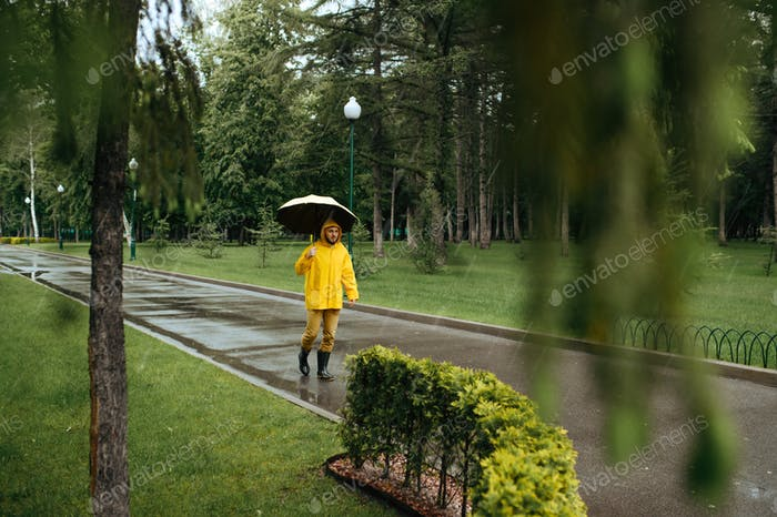 Alone man with umbrella walking in park, rainy day