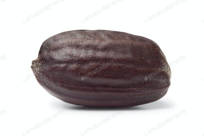 Jojoba seed