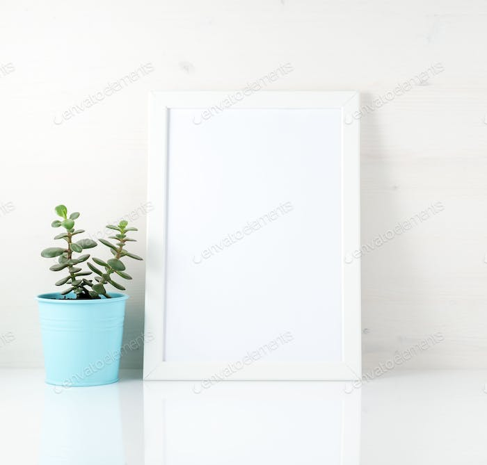 White frame, succulent on white table against the white wall. Mo
