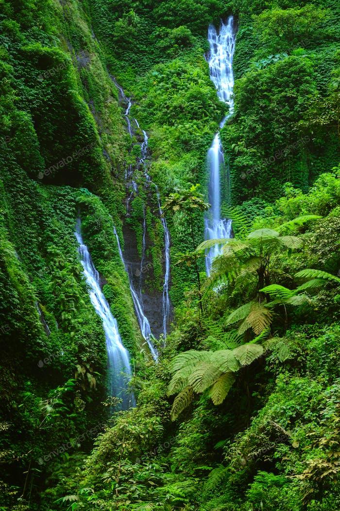 Madakaripura Waterfall, Java Oriental, Indonesia