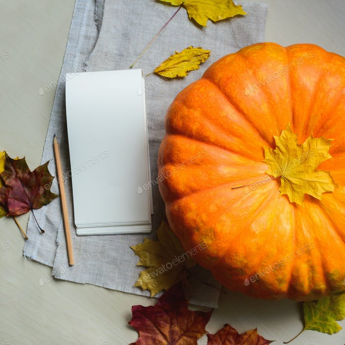 fresh harvest of orange pumpkin