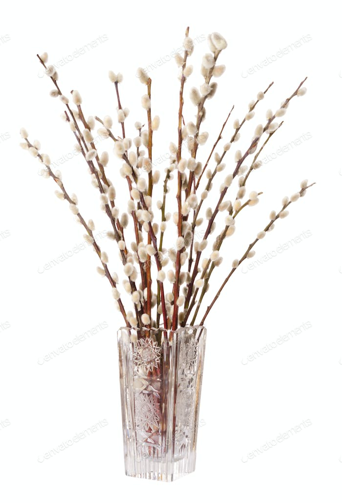 Willow bouquet with pussy willows in glass vase