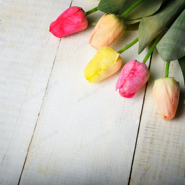 Fresh tulips on white wooden table with copy-space high angle vi