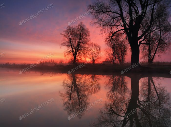 Sunrise reflection in the river