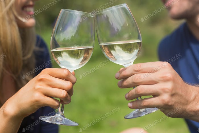 Cute couple toasting with white wine at home in the garden