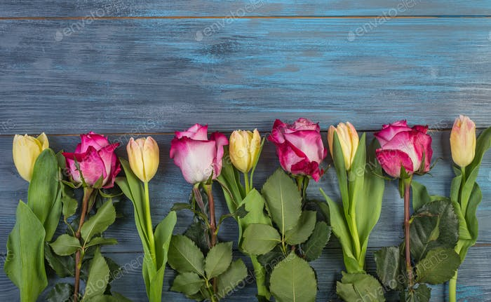 Row flowers on a blue background