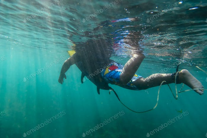 Surfer on a board, underwater view
