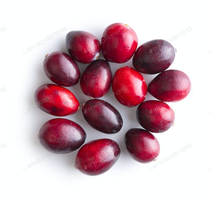Thumbnail for The tasty american cranberries.