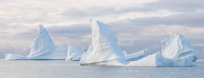 Beautiful icebergs panorama