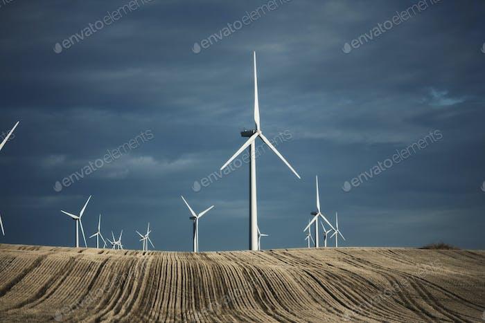 Eine Reihe von Windenergieanlagen, die in die Ferne der Landwirtschaft reichen. Felder der Stoppeln.