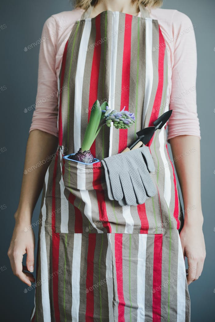 woman stands in striped apron with hyacinth and small metal shovel