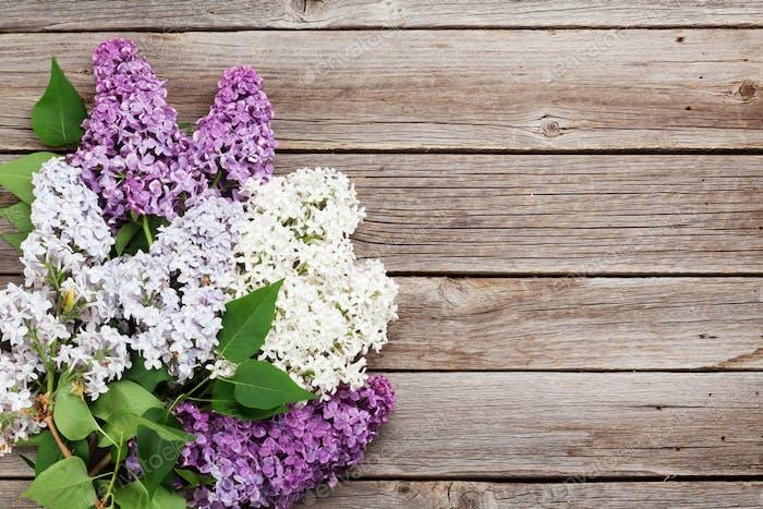 Bunte lila Blumen