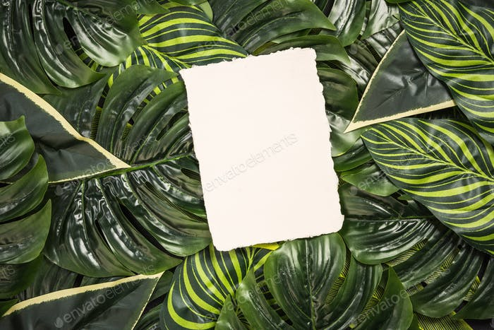 Empty card over palm leaves, top view
