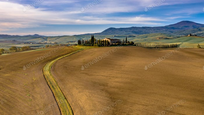 Tuscan hill with Cypress