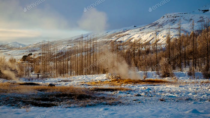 Strokkur Geysir, Geothermalfeld Haukadalur, Island
