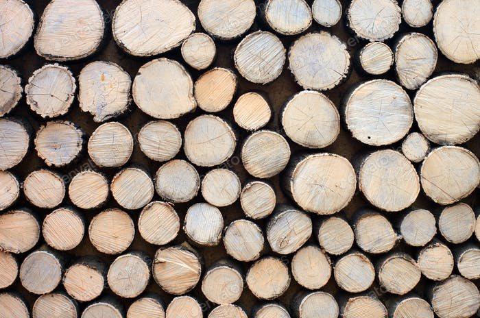 Log background texture.