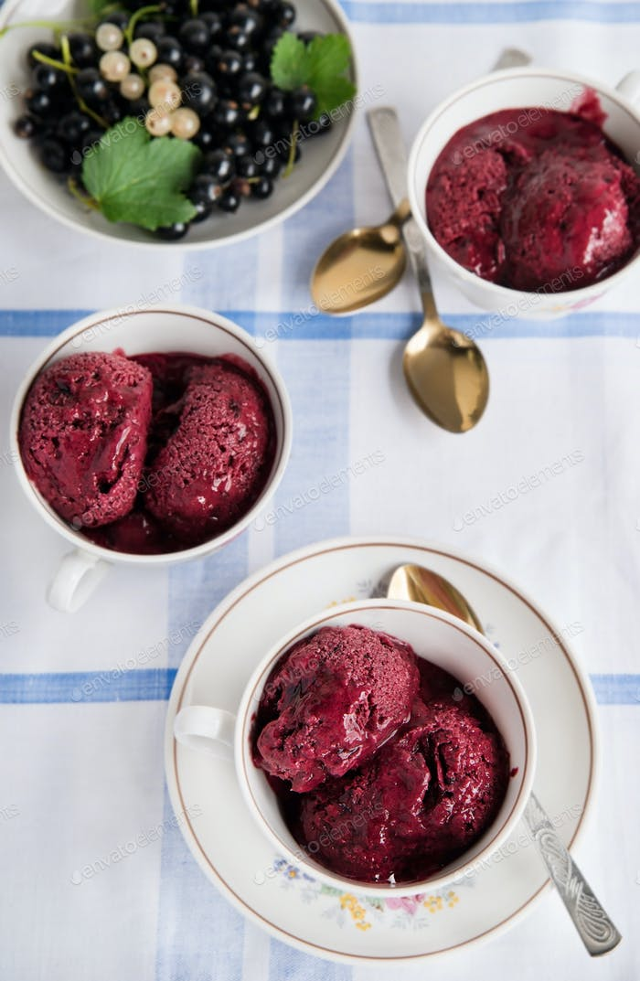 Homemade cold berry gelato (ice cream)