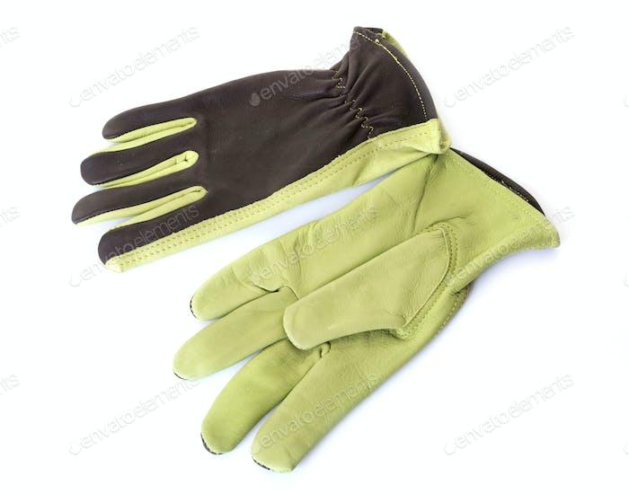 gardening gloves in studio
