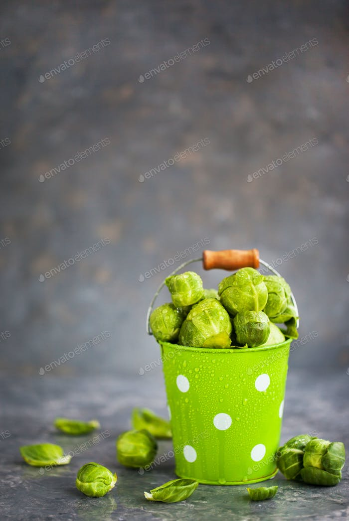 Organic fresh raw brussels sprouts in a metal bucket on gray bac