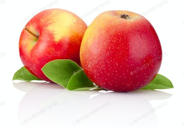 Zwei rote Äpfel Früchte und grüne Blätter